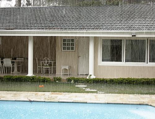 เทคนิคดูแลสวนในบ้านให้สวยในหน้าฝน